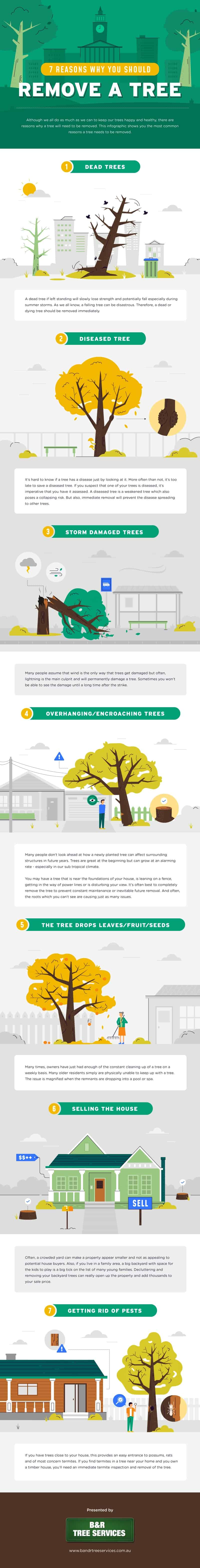 7 Reasons Why You Should Remove a Tree